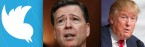 Trump Tweets During James Comey June 8 Testimony Betting Odds Up