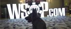 WSOP Main Event Recaps for Thursday: Phil Hellmuth, Chris Ferguson Eliminated