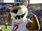 Bet the Washington State Cougars vs. Cal Week 10 Game Online