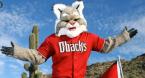 Arizona Diamondbacks Season Win Total Odds - 2020 60 Games