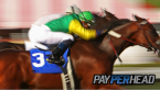 Pay Per Head Preview: The Breeders Cup Top 3 Horses To Leverage