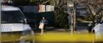 Gambino Crime Boss Shot Dead
