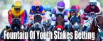Odds to Win the 2020 Fountain of Youth Stakes