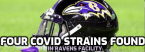 At Least Four Covid Strains Found at Ravens Facility