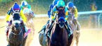 Where Can I Bet on Horses Online From Ohio?