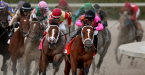 Where Can I Bet the Kentucky Derby Online From Georgia?