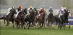 2020 Pegasus Stakes Betting Odds