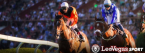 Kentucky Derby Online Betting Data Improvements at LeoVegas