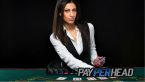 See More Action in Sportsbooks with Live Casinos and Horse Betting