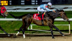 What Will Modernist Pay Out to Win the Belmont Stakes