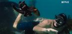 Oscar Payout Odds 2021 Best Documentary Feature, Short - My Octopus Teacher