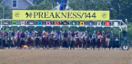 Where Can I Bet the Preakness Stakes Online From North Carolina