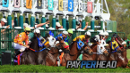 The Preakness Stakes Racebook Updates and Strategies for Bookies