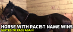 Horse With Racist Name Raises Eye Brows, Trainer Banned