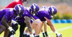 NFL Betting – Minnesota Vikings Win Total 2020